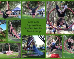 2017-2019 Gymnastica SeaSide Market Aerial Hoop